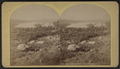 Blue Mountain Lake from the Merwin's, by Stoddard, Seneca Ray, 1844-1917 , 1844-1917.png