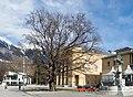 Blutbuche vor dem Tiroler Landestheater.jpg