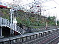 Bogston (2).jpg