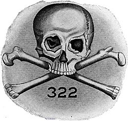 http://upload.wikimedia.org/wikipedia/commons/thumb/4/41/Bones_logo.jpg/250px-Bones_logo.jpg
