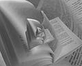 Book 06487 20040730160046 droste effect nevit.jpg