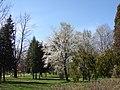 Brașov, Parcul Tractorul - panoramio.jpg