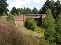 Bridge across the disused railway cutting, Cranesmoor, New Forest - geograph.org.uk - 211631.jpg