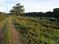 Bridleway from Norleigh Mill - geograph.org.uk - 581166.jpg