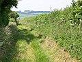 Bridleway to Bishopstone - geograph.org.uk - 1367927.jpg