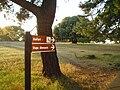 Brijuni - Safari( National park) - panoramio.jpg