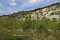 Brochterbeck Naturschutzgebiet Osterklee Kalksteinbruch 01.JPG