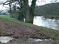 Brook flowing into the River Usk - geograph.org.uk - 291941.jpg