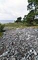 Brucebo bygdeborg 1.jpg