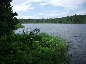 Brylinets Lake 3.jpg