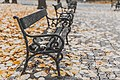 Bucharest park benches (Unsplash).jpg