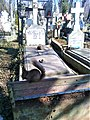 Bucuresti, Romania. Cimitirul Bellu Catolic. O veverita locatara a Cimitirului.jpg