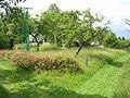 Bunclava, od jihu.jpg