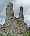 BurgHohenfreyberg Turm.jpg