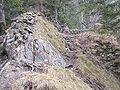 Burg Hohenwaldeck 2.jpg