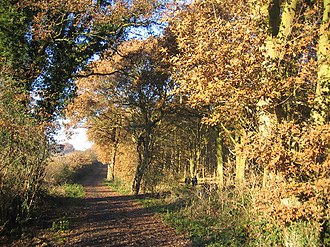 Ribbesford - Image: Burlish Top nature reserve geograph.org.uk 89959
