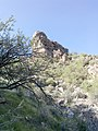 Butcher Jones Trail - Mt. Pinter Loop Trail, Saguaro Lake - panoramio (117).jpg