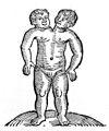 C. Lycosthenes, Prodigiorum ac ostentorum chronicon. Wellcome L0030209.jpg
