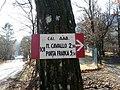 CAI 101 Bivio Rilò Segnavia.jpg