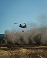CH-47 dust storm 150615-Z-AJ996-001.jpg