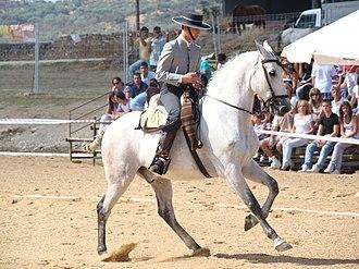 Hispano-Árabe - Image: Caballofrg