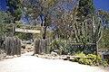 Cacti and Succulent Garden.jpg