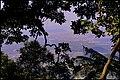 Caminho do Mar, Cubatão - SP, Brazil - panoramio (1).jpg