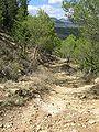 Camino de San Miguel 2.jpg