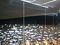 Canaries Tenerife Santa Cruz TEA Bibliotheque - panoramio (3).jpg
