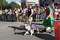 Capital Pride Parade DC 2013 (9062759001).jpg