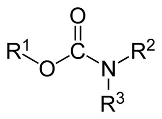 Carbamate - Chemical structure of carbamates