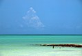Caribbean Color, Distant Cumulonimbus (5307722144).jpg