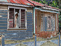 Caribbean Life (7693076716).jpg