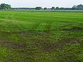 Carved meadows in Midden-Drenthe.jpg