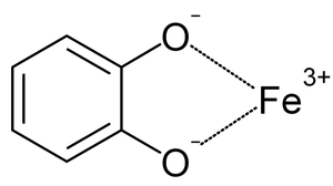 Siderophore - Catecholate-iron complex