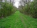 Catkill Lane. - geograph.org.uk - 161156.jpg