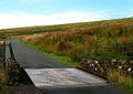 Cattle Grid, Cold Fell - geograph.org.uk - 46464.jpg