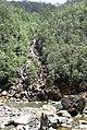 Cayo Guan 2008 - panoramio (2).jpg