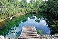 Cenote Huaymil - panoramio.jpg