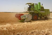 الزراعة في الجزائر 220px-Cereal_harvest