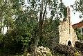 Ceret Saint-Georges del Pla del Carner.jpg