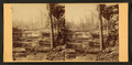 Charley Falls, by Roberts, D. H., fl. ca. 1860s.png