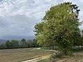 Chemin entre Montessuy et Billignin à Belley, octobre 2019 (2).jpg