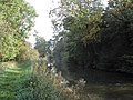 Chesterfield Canal - geograph.org.uk - 66175.jpg