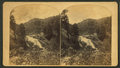 Cheyenne Canyon Mountain. Five miles south of Colorado Springs, by Nims, F. A. (Franklin A.).png