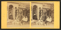 Children in a goat cart in front of house, from Robert N. Dennis collection of stereoscopic views 2.png