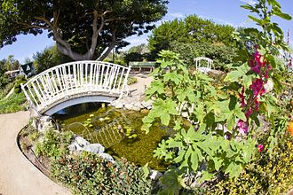 South Coast Botanic Garden - South Coast Botanic Garden