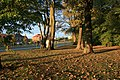 Church Lane - geograph.org.uk - 574938.jpg