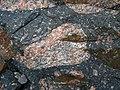 Clast-rich impact pseudotachylite (Sudbury Breccia, Paleoproterozoic, 1.85 Ga; Windy Lake Northwest roadcut, Sudbury Impact Structure, Ontario, Canada) 54 (40791713943).jpg
