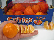 Box of Clementines with hand for size reference.